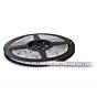 LED striscia K-Light TR-300  IP65  RGB - 5m